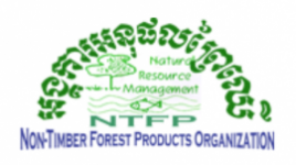 Logo of Non-Timber Forest Products organisation