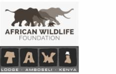 Combined logos of the African Wildlife Foundation and TAWI Lodge